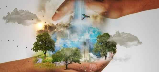 dom - ekologiczne rozwiązania